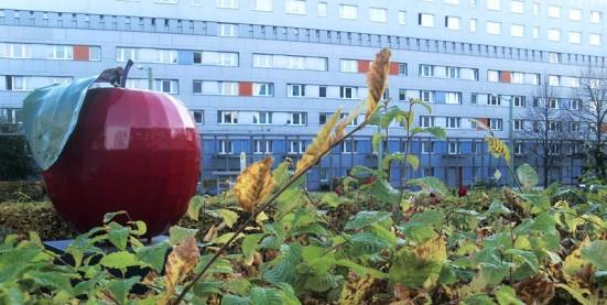 polnischer Apfel vor Neubau